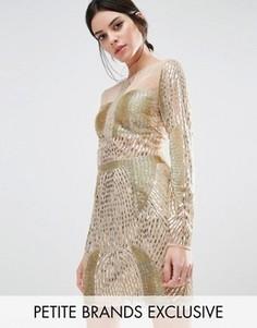 Платье мини с длинными рукавами и золотистой отделкой Maya Petite - Золотой
