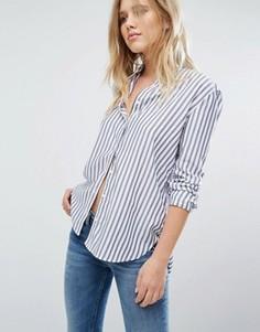Рубашка в полоску Hilfiger Denim - Мульти