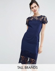23b81a84d5f Платье-футляр миди с контрастной отделкой кружевом Paper Dolls Tall -  Темно-синий