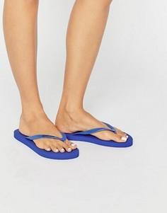 Шлепанцы с логотипом Calvin Klein - Синий