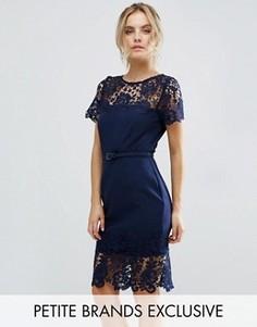 Кружевное контрастное платье-футляр миди с поясом Paper Dolls Petite - Темно-синий