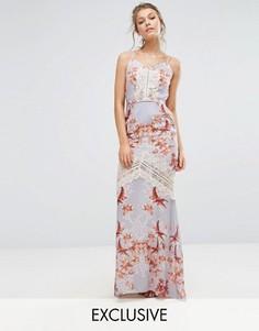 Платье макси с принтом, открытой спиной и кружевными вставками Hope & Ivy - Мульти