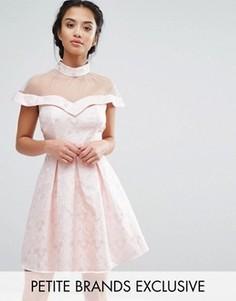 Платье для выпускного с высокой сетчатой горловиной и жаккардовым узором пейсли Chi Chi London Petite - Розовый