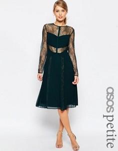 Приталенное кружевное платье миди с вырезами ASOS PETITE - Зеленый