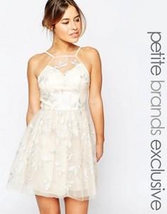 Платье для выпускного с халтером и вышивкой Chi Chi London Petite - Розовый