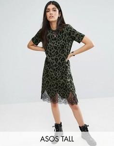 Платье-футболка с кружевными вставками и леопардовым принтом ASOS TALL - Мульти