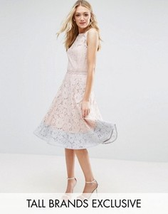 Платье миди для выпускного с кружевом и контрастным краем Little Mistress Tall - Розовый