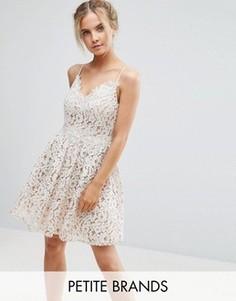 Короткое приталенное платье для выпускного из премиум-кружева Little Mistress Petite - Белый