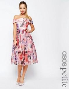 Платье миди из органзы с цветочным принтом ASOS PETITE SALON - Мульти