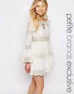 Короткое приталенное платье с кружевными вставками White Cove Petite - Белый