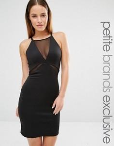 Облегающее платье без рукавов с глубоким вырезом и сеточкой John Zack Petite - Черный