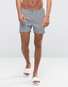 Классические шорты для плавания в полоску Scotch and Soda - Темно-синий