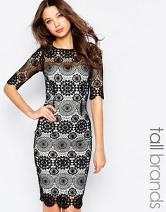 Кружевное платье-футляр Paper Dolls Tall - Черный