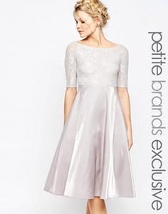Кружевное платье миди для выпускного True Decadence Petite - Серый
