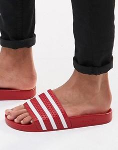Шлепанцы adidas Originals Adilette 288193 - Красный