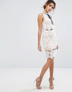 Кружевная юбка с цветочным узором Endless Rose - Мульти