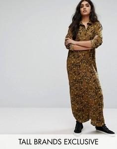 Длинная рубашка с леопардовым принтом Daisy Street Tall - Мульти