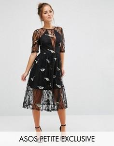 Кружевное платье миди с вышивкой птиц ASOS PETITE - Черный