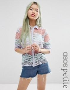 Блузка с пастельной полосой и кружевным принтом ASOS PETITE - Мульти