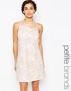 Цельнокройное платье с фигурным кружевом Little Mistress Petite - Розовый
