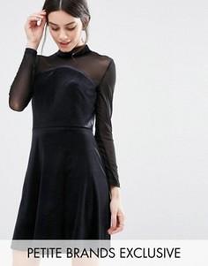 Бархатное короткое приталенное платье с сетчатыми рукавами True Decadence Petite - Черный