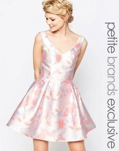 Приталенное платье мини для выпускного с нежным цветочным принтом Chi-Chi London Petite - Мульти
