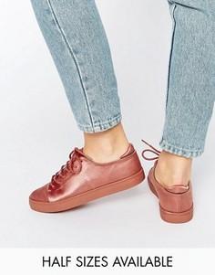 Кроссовки на шнуровке ASOS DARLEY - Бежевый
