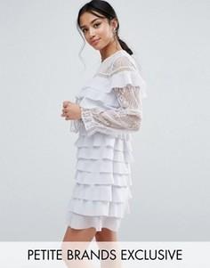 Платье мини с кружевом и оборками True Decadence Petite - Фиолетовый
