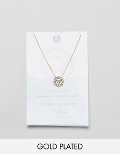 Позолоченное ожерелье Цветочная чакра Orelia - Золотой