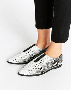 Туфли на плоской подошве с острым носом ASOS MATILDA - Мульти