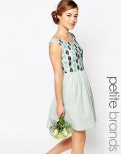 Платье мини для выпускного с отделкой на лифе и открытыми плечами Maya Petite - Зеленый
