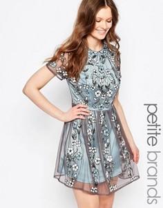 Короткое приталенное платье с декоративной отделкой Maya Petite - Синий