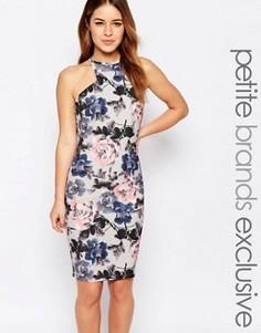 Платье-футляр с цветочным принтом Paper Dolls Petite - Мульти
