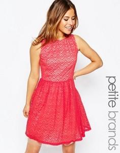 Короткое приталенное платье с сетчатым подолом Little Mistress Petite - Розовый