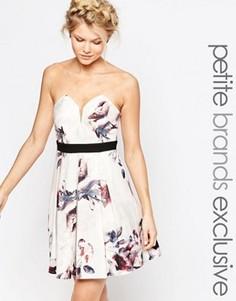 Короткое приталенное платье-бандо с цветочным принтом Little Mistress Petite - Мульти