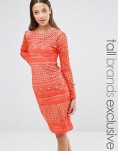 Кружевное платье миди с длинными рукавами True Decadence Tall - Оранжевый