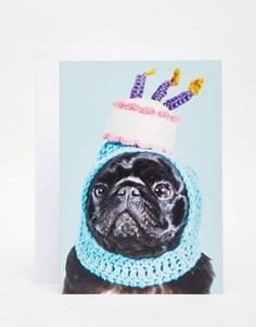 Открытка Jolly Awesome Pug Birthday Hat - Мульти