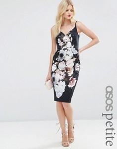 Темное платье-футляр миди с цветочным принтом ASOS PETITE Hitchcock - Мульти