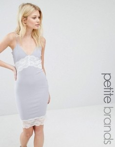 Платье-комбинация с контрастным кружевом Missguided Petite - Серый