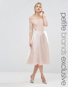 Кружевное платье миди для выпускного True Decadence Petite - Бежевый