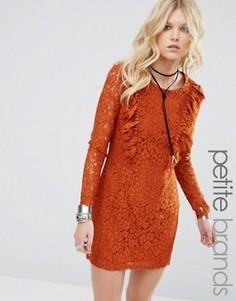 Короткое приталенное платье с кружевной отделкой Glamorous Petite - Коричневый