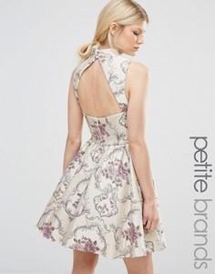 Жаккардовое платье мини для выпускного с высокой горловиной Chi Chi London Petite - Мульти