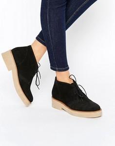 Замшевые ботинки на шнуровке ASOS ALVA - Черный