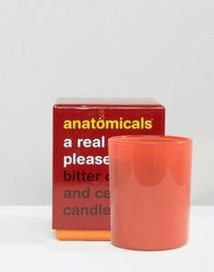 Anatomicals A Real Wick Pleaser - Свеча с ароматом померанца и кедра 200 г - Бесцветный