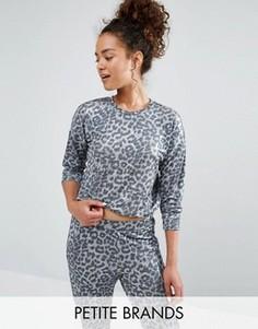 Джемпер с леопардовым принтом New Look Petite - Серый
