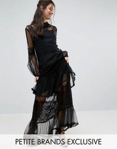 Платье макси для выпускного с рукавами-колокол White Cove Petite - Черный
