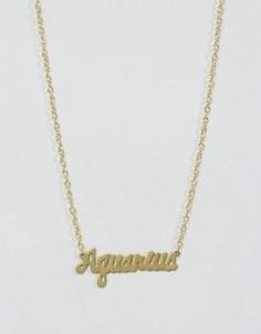 Ожерелье со знаком зодиака Водолей Rock N Rose - Золотой