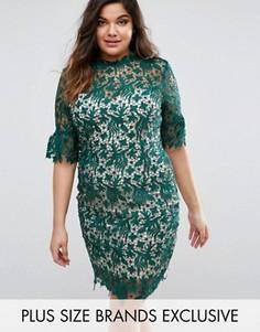 Платье-футляр из кружева кроше Paper Dolls Plus - Зеленый