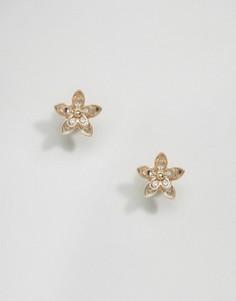 Кластерные серьги-гвоздики с камнями ASOS - Золотой