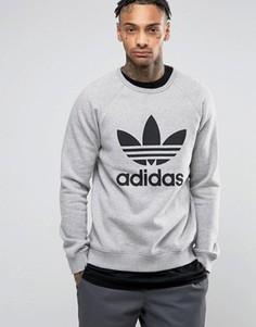 Серый свитшот с круглым вырезом и логотипом-трилистником adidas Originals BK5866 - Серый